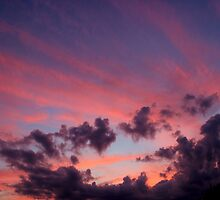 Sailor's Delight by Kathleen Daley