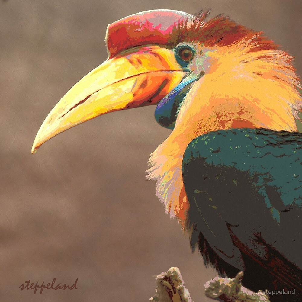 The beak makes the bird - photo-painting by steppeland