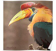 The beak makes the bird - photo-painting Poster