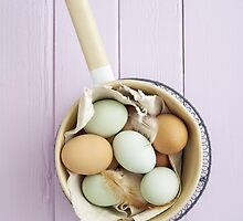 Organic eggs from Easter egger chicken by Elisabeth Coelfen