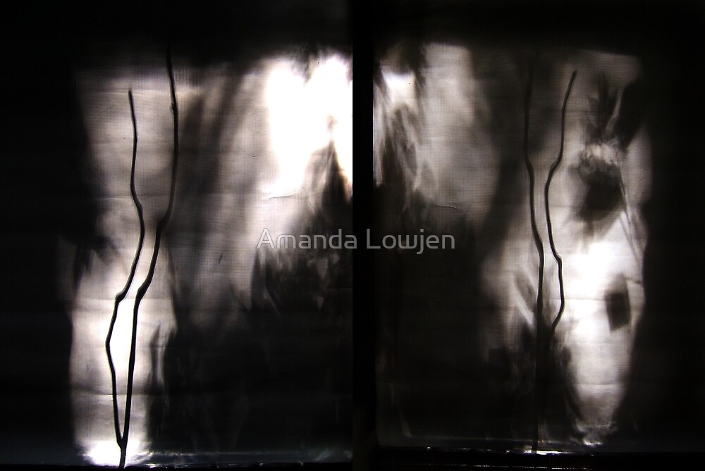 Untitled by Amanda Lowjen
