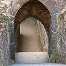 Conwy Castle (9) by kalaryder