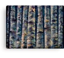 Aspen Forest In The Rocky Mountains Canvas Print