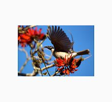 Noisy Friabird, Urunga NSW T-Shirt