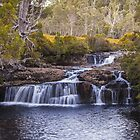 Enchanted Falls - Tasmania by Ron Finkel