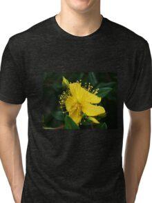 Mellow Yellow Tri-blend T-Shirt
