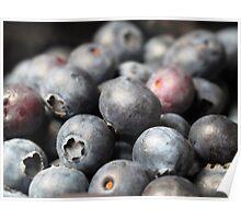 Blueberry Delight.. Poster