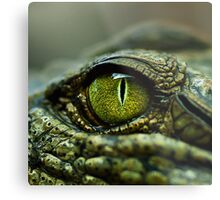 Eye of the Crocodile [Print & iPad Case] Metal Print