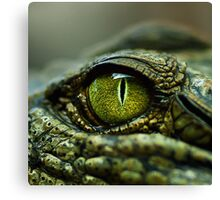 Eye of the Crocodile [Print & iPad Case] Canvas Print