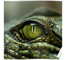 Eye of the Crocodile [Print & iPad Case] Poster