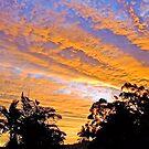 SUNSET OVER THE VILLAGE by Margaret Stevens