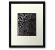 shook Tiel Framed Print