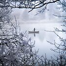 Icy Morning by globeboater