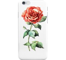 Watercolor rose iPhone Case/Skin