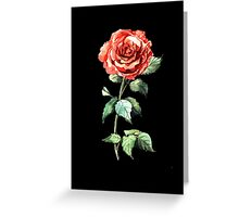 Watercolor rose Greeting Card