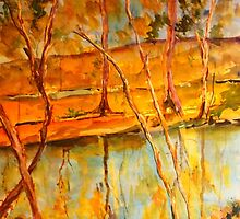Goulburn River Seymour Vic Australia by Margaret Morgan (Watkins)