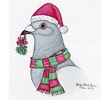 Santa Pigeon Photographic Print
