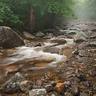 The sound of the brook by JHRphotoART