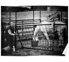 The Lady runs the farm Poster
