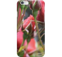 Through the Roses iPhone Case/Skin