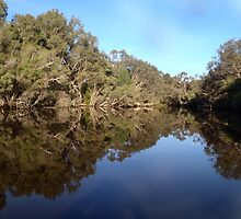 Canning River reflections by BigAndRed