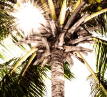 Palm tree with Retro summer filter effect Sticker