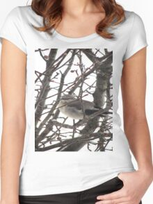 Bird in the Snow Women's Fitted Scoop T-Shirt