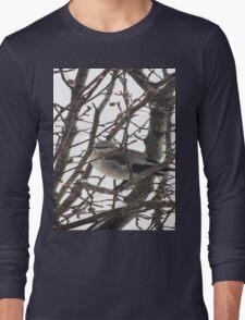 Bird in the Snow Long Sleeve T-Shirt