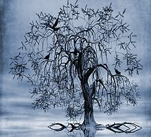 The Wishing Tree Cyanotype by John Edwards