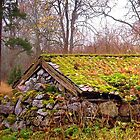 Swedish version of a barn by globeboater