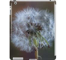 Dandelion perfection iPad Case/Skin