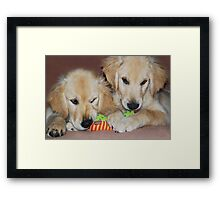 """""""Sibling Rivalry"""" Framed Print"""