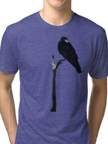 Punk Rock Raven Tri-blend T-Shirt