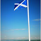 Aye Scotland.... by Francis  McCafferty This is Fife!
