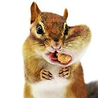 Would you have a smaller peanut?... by Laurie Minor