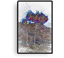 Neon Trees Townsville Canvas Print