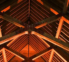 Trusses and Crossbeams by John  Kapusta
