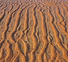 mud flat patterns  by Elliot62