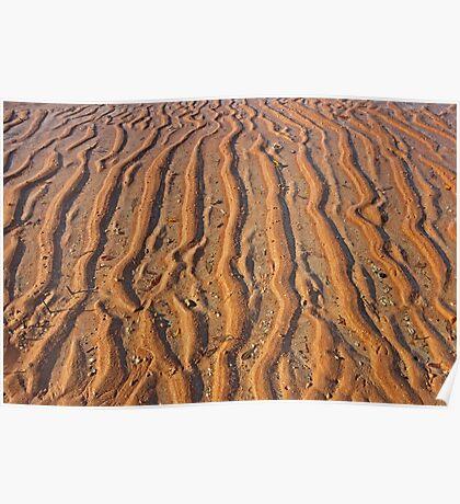 mud flat patterns  Poster