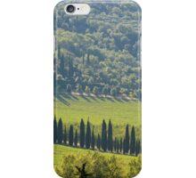 Green landscape around Perugia - Italy iPhone Case/Skin