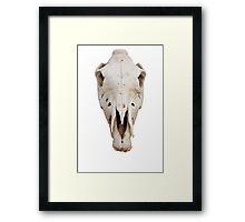 horse skull Framed Print