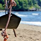 Seaside Swing by Kathleen M. Daley