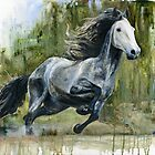 Running Andalusian Horse by IrVia