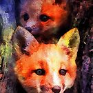 Fabulous Foxes: Mama!  What Was That Sound? by Bunny Clarke