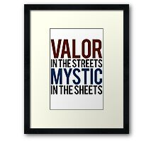 Valor in the Streets, Mythic in the Sheets (Pokemon GO) Framed Print