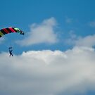Skydiver by Martie Venter