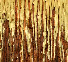 Barren Trees & Summer Showers (abstract) by Laurie Minor