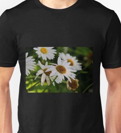 Dances Undisturbed Unisex T-Shirt