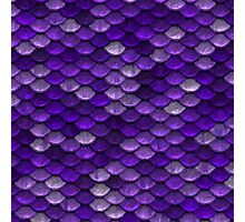 Purple Scales Photographic Print