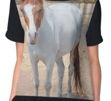 Painted Horse Chiffon Top